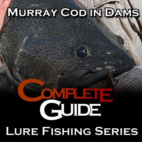 Complete Guide: Lure Fishing Series