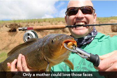 chris-cotterill-fly-carp