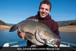 jack-zyhalak-murray-cod