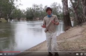 social-fishing-tip-fishing-for-natives-in-high-irrigation-water