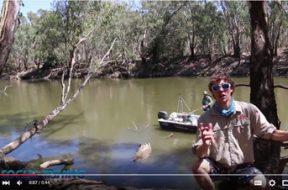 social-fishing-tip-fishing-in-the-shade