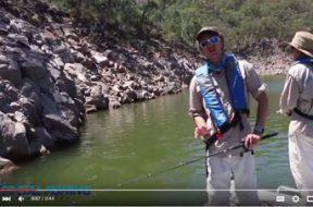 social-fishing-tips-casting-spinnerbaits-in-dams