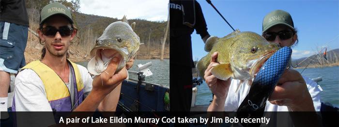 lake-eildon-jim-bob-murray-cod