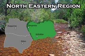 north-eastern-region
