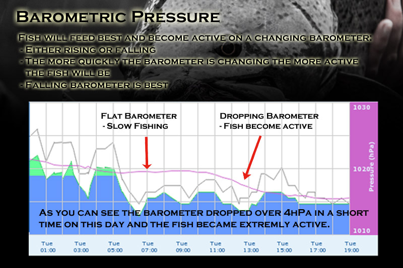 The Weather Effect Pt 1 –  Barometric Pressure