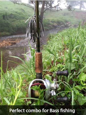 bass-fishing-rod-reel