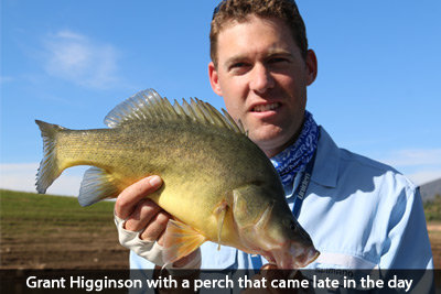 grant-higginson-golden-perch