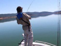 freshwater-fixation-social-fishing