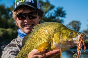 rhys-creed-golden-perch-social-fishing