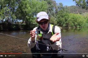 social-fishing-tip-spinnerbaits