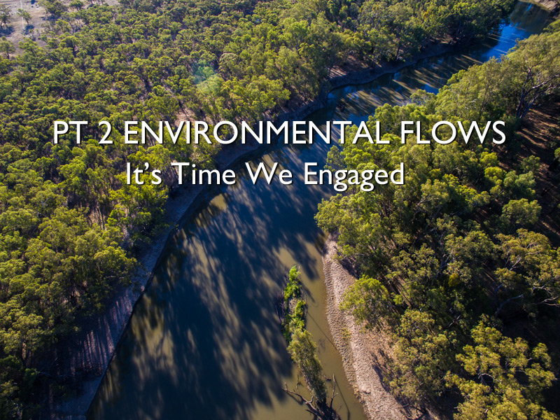 Pt 2 Environmental Flows – It's Time we Engaged!