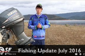 fising-update-july-2016
