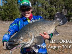 social-fishing-editorial-august