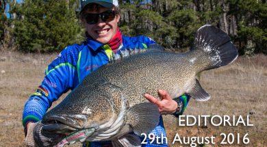 social-fishing-editorial-august