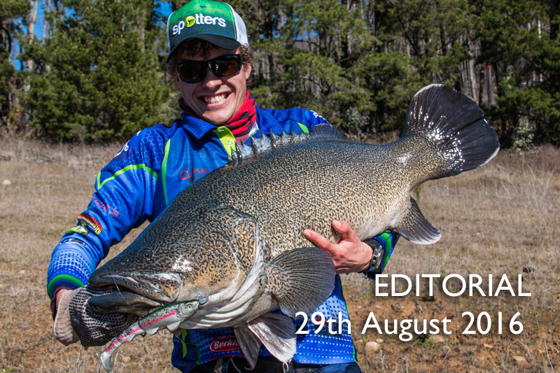 Editorial – 29th August