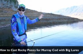 social-fishing-tip-how-to-cast-rocky-points-for-murray-cod-using-big-lures