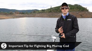 social-fishing-tip-important-tip-for-fighting-big-murray-cod