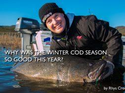 winter-murray-cod-fishing-blowering