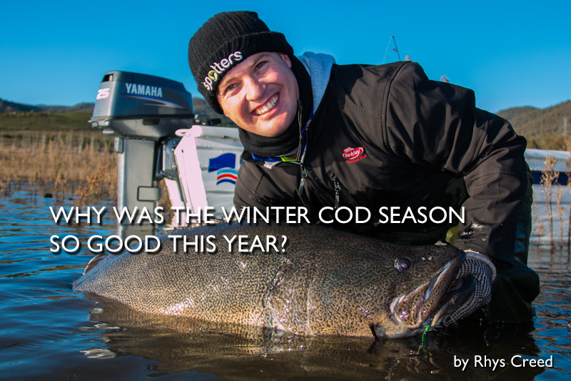 Why was the Winter Cod Season so good this year?
