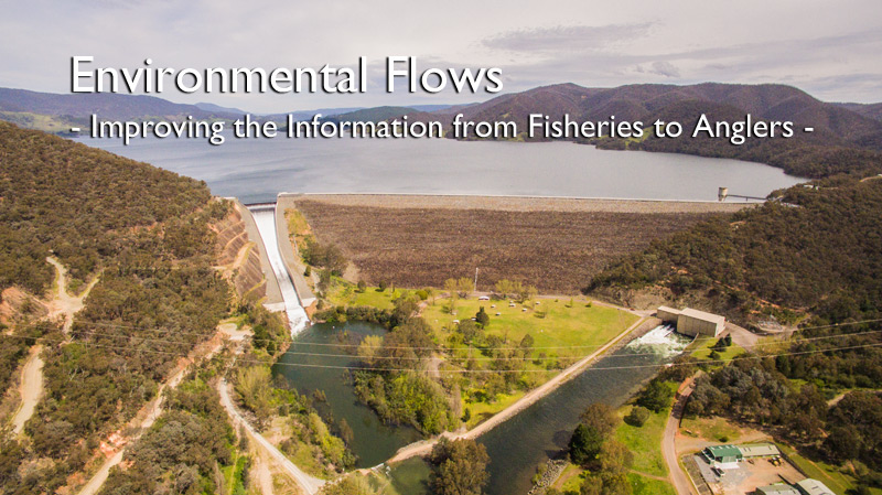 Environmental Flows – Improving the Information from Fisheries to Anglers