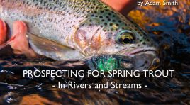 Prospecting for Spring Trout in Rivers and Streams