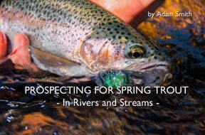 spring-trout-rivers-streams-adam-smith-social-fishing