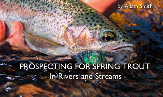 spring-trout-rivers-streams-adam-smith-social-fishing