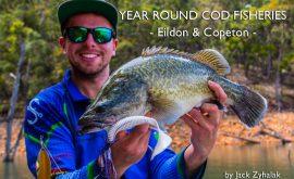 eildon-and-copeton-open-year-round-cod-fishing