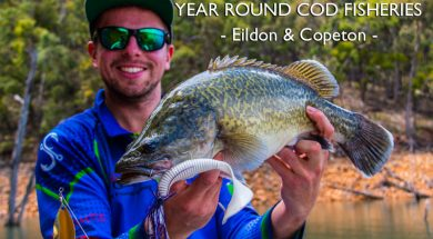 eildon-and-copeton-open-year-round-cod-fishing