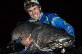 120cm-monster-murray-cod
