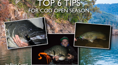 top-tips-for-cod-open-season