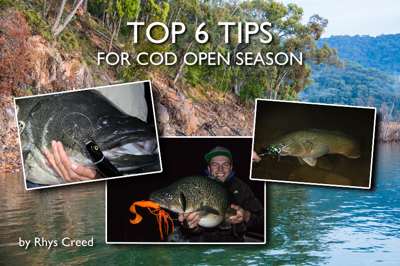 Top 6 Tips for Cod Opening Season