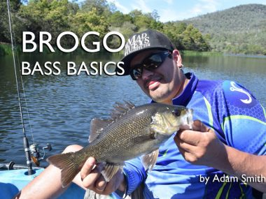 brogo-dam-bass-fishing