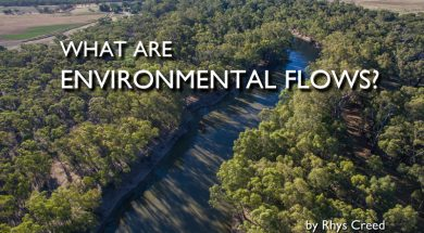 what-are-environmental-flows