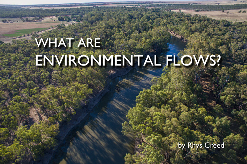 What are Environmental Flows?