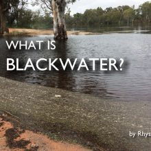 what-is-blackwater