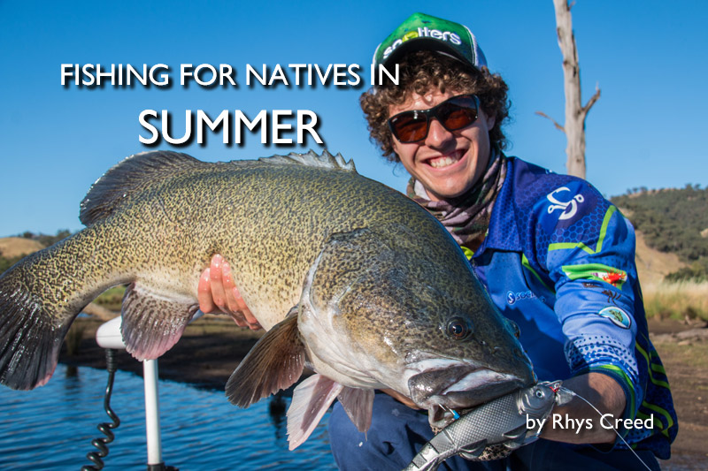 Fishing for Natives in Summer Conditions
