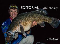 social-fishing-editorial