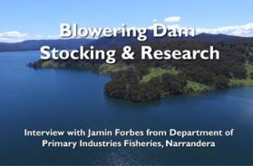 blowering-dam-jamin-forbes-interview