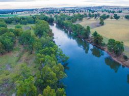 environmental-flow-murrumbidgee-river