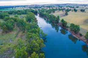 environmental-flow-murrumbidgee-river