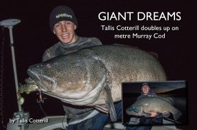 giants-dreaming-tallis-cotterill
