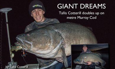 giants-dreaming-tallis-cotterill