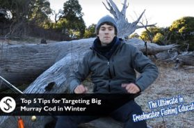 top-5-tips-winter-cod