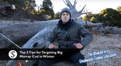 top-5-tips-winter-cod