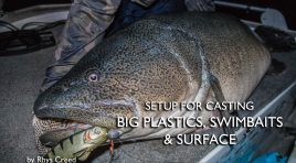 Setup for Casting Big Plastics, Swimbaits and Surface