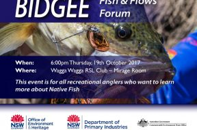 Bidgee-Fish-&-Flows-Forum—Small-Promo