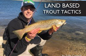 land-based-trout-tactics-fishing