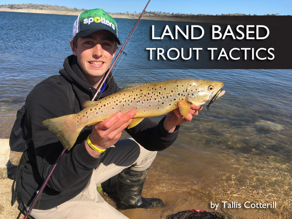 Land Based Trout Tactics
