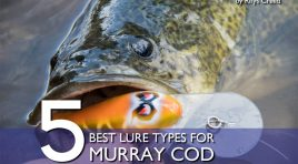 The 5 Best Lure Types for Murray Cod